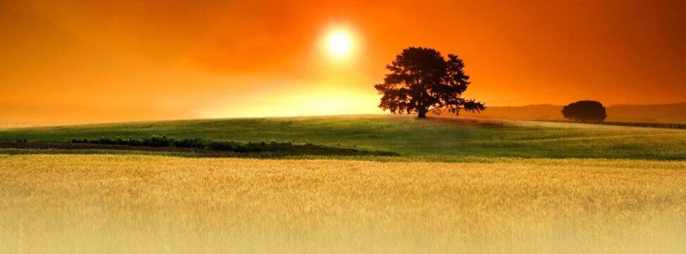 slide campo grano tramonto chironi colori caldi